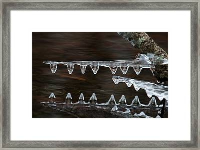 Ice Crocodiles Framed Print by Lara Ellis