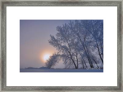 Ice Crystals In The Sky Framed Print