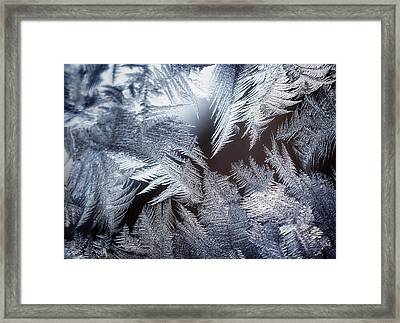 Ice Crystals Framed Print by Scott Norris