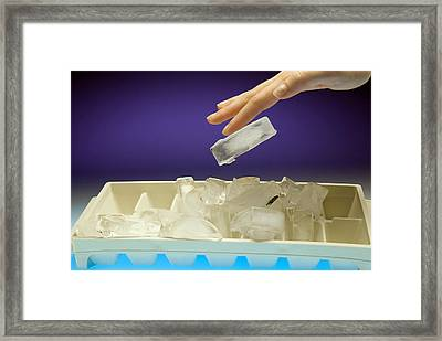 Ice Cube Framed Print by Charles D. Winters
