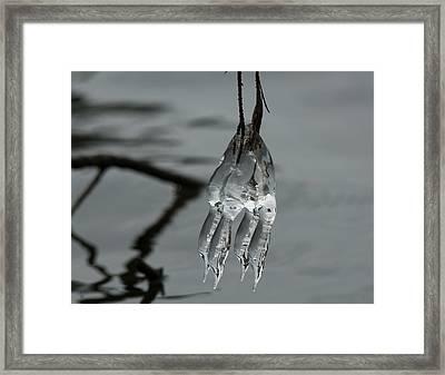 Ice Dance Framed Print by Lara Ellis