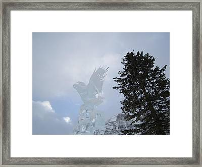 Ice Eagle Framed Print by Cathy Long