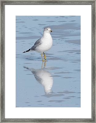 Ice Fishing Framed Print