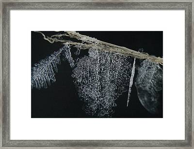 Ice Frozen In Time Framed Print
