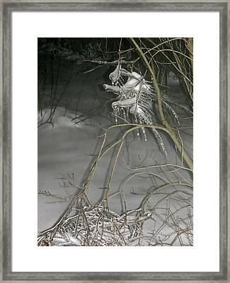 Ice Imp Framed Print by Azthet Photography