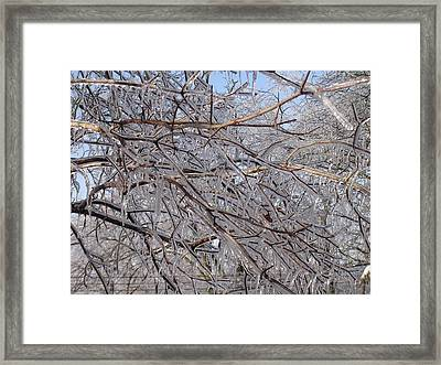 Ice In December Framed Print by Dusty Reed
