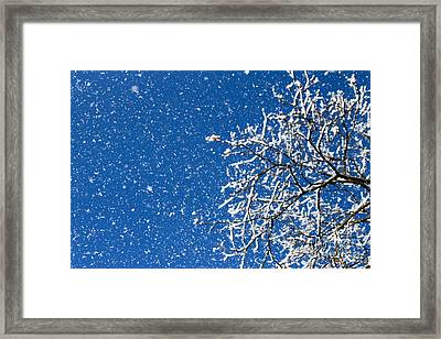 Framed Print featuring the photograph Ice In The Air by Jay Nodianos