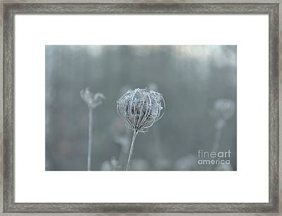 Ice Is In The Air Framed Print