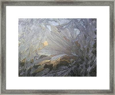 Ice Lily Framed Print by Jaime Neo