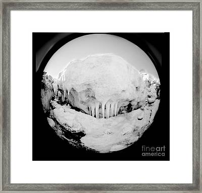 Ice Monster Framed Print by Diana Jo Marmont