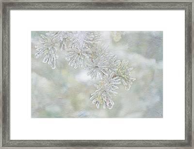 Ice Needles Framed Print