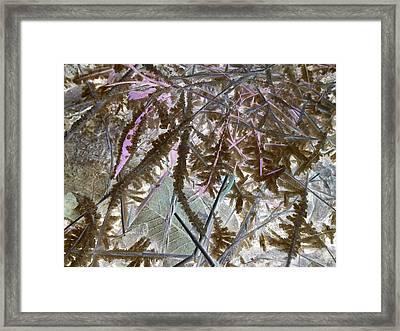 Ice Negated Framed Print