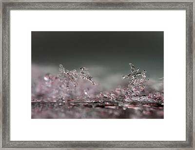 Ice No.014 Framed Print by Kolomija
