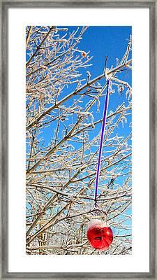 Ice Ornament Framed Print by Jeffrey J Nagy