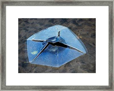 Framed Print featuring the photograph Ice Penetration by Gary Slawsky