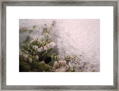 Ice Prison Framed Print by Dave Woodbridge