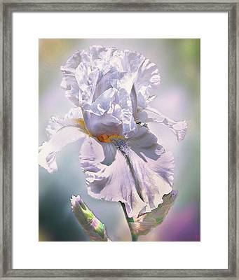 Framed Print featuring the digital art Ice Queen by Mary Almond