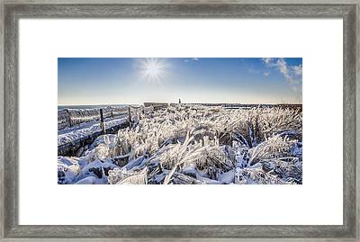 Ice Sculptures Framed Print by Anna-Lee Cappaert