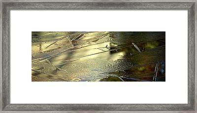 Ice Skin Framed Print by Simone Ochrym