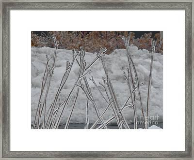 Ice Sticks Framed Print by Deborah Smolinske