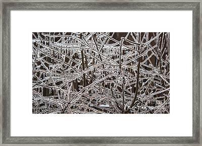 Ice Storm Framed Print by Arlene Carmel