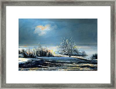 Ice Storm Coast Of Maine Framed Print by Cindy McIntyre