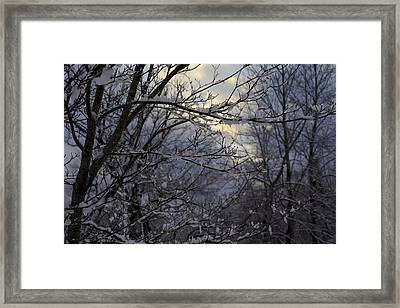 Winter's Embrace Framed Print by Jane Eleanor Nicholas