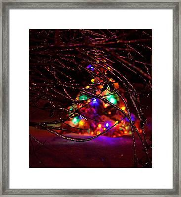 Ice Tree 2013 Framed Print by Jeffrey J Nagy
