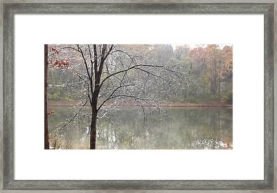 Framed Print featuring the photograph Ice Tree by Bill Woodstock