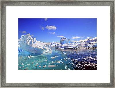 Icebergs And Ice Flows Framed Print