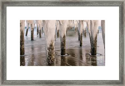 Iced Framed Print by Paul Noble