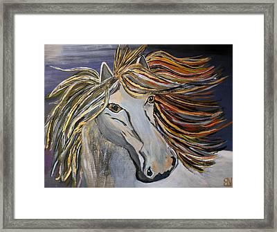 Icelandic Horse Framed Print by Becki Nation