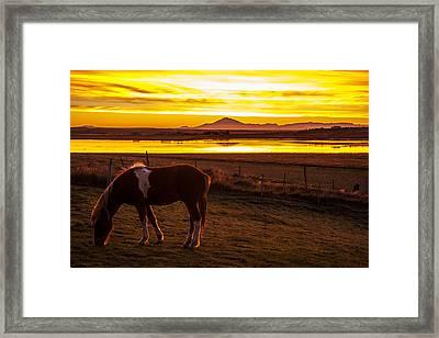 Icelandic Sunrise Framed Print