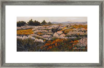 Iceplant And Chaparral Framed Print by Betsee  Talavera