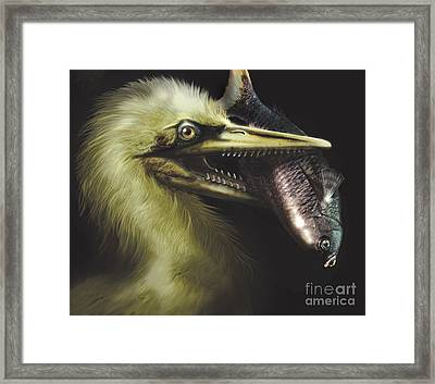 Ichthyornis Portrait With Fish In Mouth Framed Print by Jan Sovak