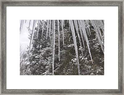 Icicle Dreams Framed Print