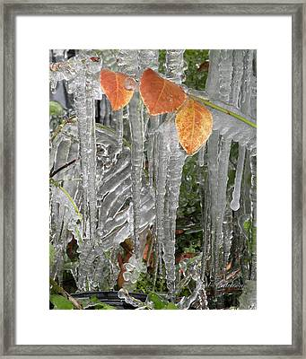 Icicles And Orange Leaves Framed Print