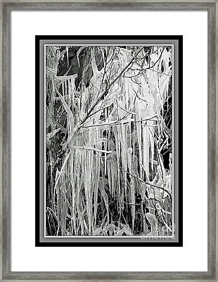 Icicles In Black And White Framed Print by Carol Groenen