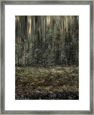 Icing The Frost Framed Print by Lisa Aerts