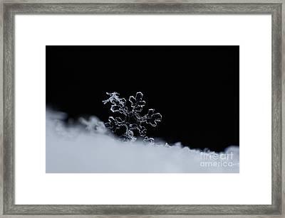 Icy Diamond Framed Print by Stela Taneva