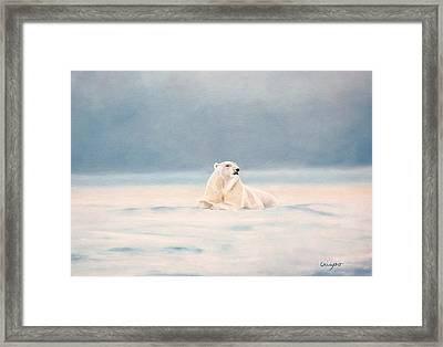 Icy Fields Framed Print