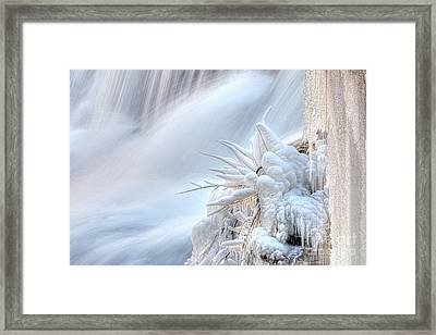 Icy Fingers Framed Print