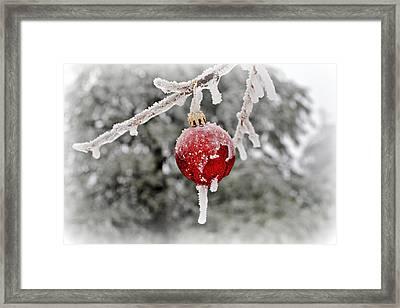 Icy Glazing Framed Print by Kelly Nowak