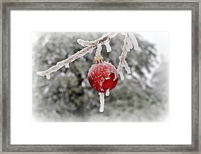 Icy Glazing Framed Print