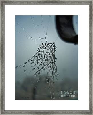 Icy Spiderweb Framed Print by Ramona Matei