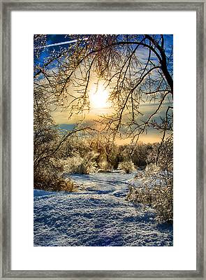 Icy Sunrise Framed Print by Ryan Crane