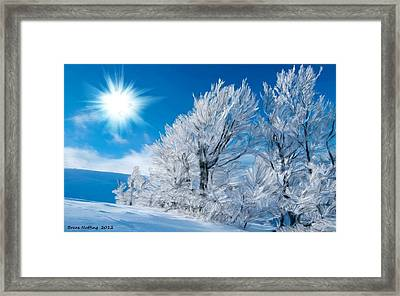 Icy Trees Framed Print by Bruce Nutting