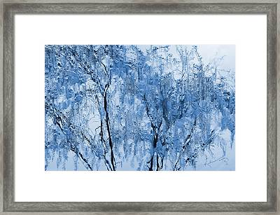 Icy Winter Framed Print by Kume Bryant