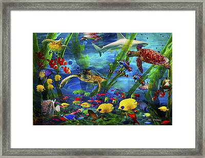 I'd Like To Be Under The Sea...... Framed Print