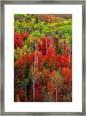 Idaho Autumn Framed Print